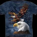 The Mountain T-Shirts at Davis Trailer World